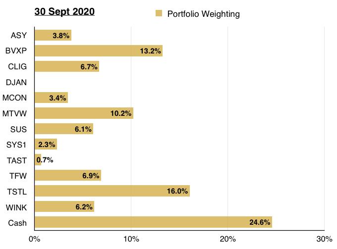 maynard paton q3 2020 portfolio holding weighting