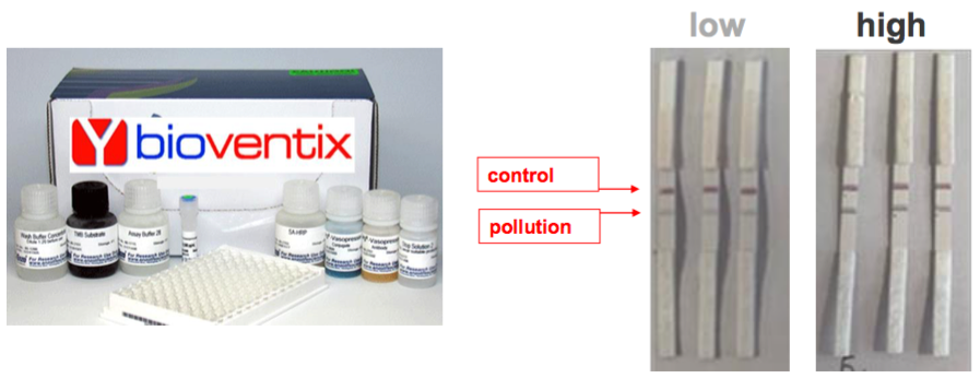 bvxp bioventix fy 2020 results pollution monitoring ket