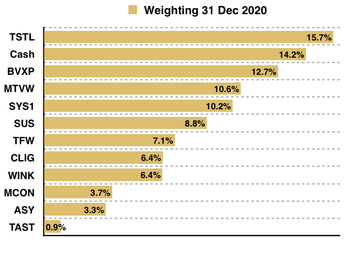 maynard paton 2020 q4 portfolio weightings year end